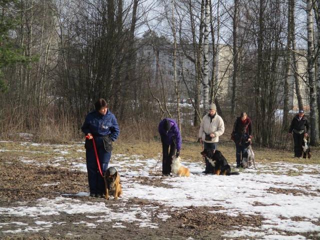 Suņu treniņi trenere