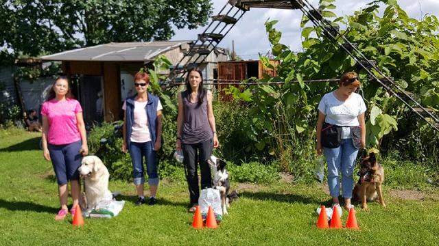 Elibird Dogs sacensības treniņi
