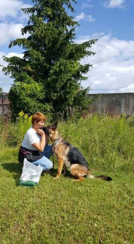 suņu apmācības